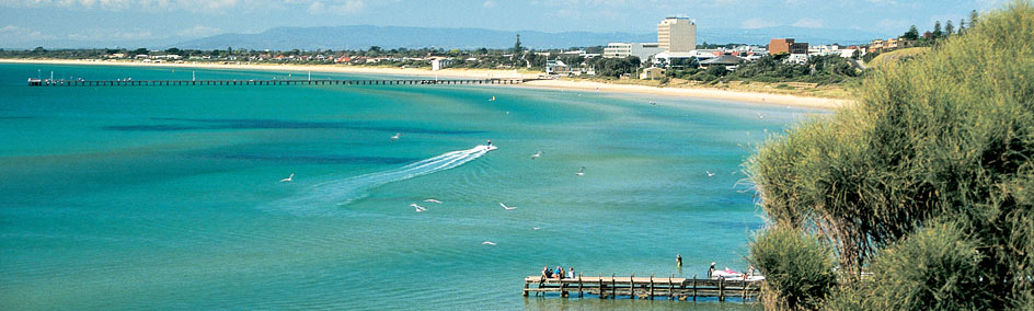 Accommodation in Frankston for your holiday in Mornington, Phillip Island and Dandenong Ranges